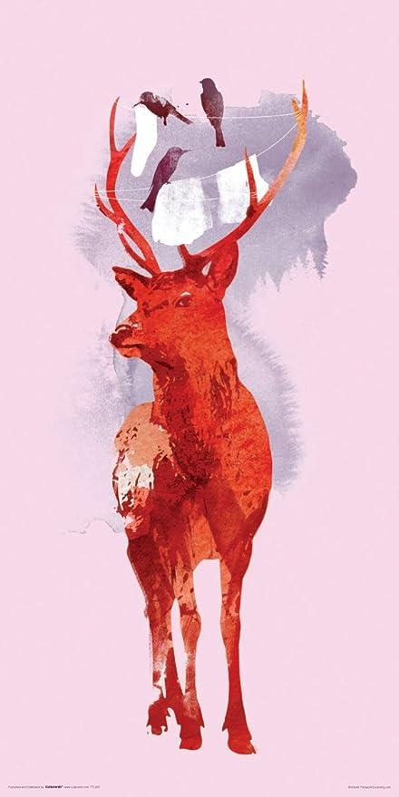 Culturenik Robert Farkas Red Fox Face Modern Contemporary Animal Decorative Art Print Unframed 12x24 Poster