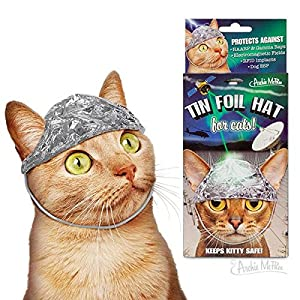 Archie McPhee Tin Foil Hats for Conspiracy Cats 2