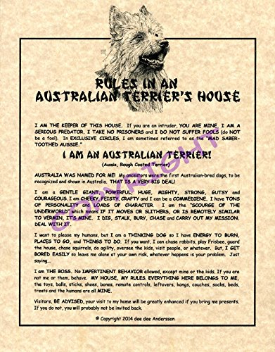 Rules In An Australian Terrier's House