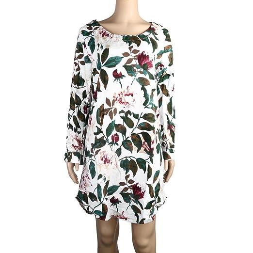 7095a565a5 Rambling Plus Size Women Floral Dress