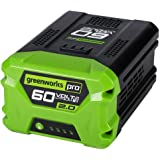 Amazon.com: Snapper 60 Volt Lithium-Ion Battery: Home ...