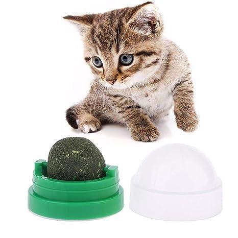 Lwl220 Juguete de masticar para gatos y gatos, juguete para ...