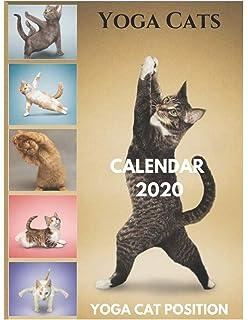 Yoga Cats 2020 Square: Amazon.es: Inc Browntrout Publishers ...