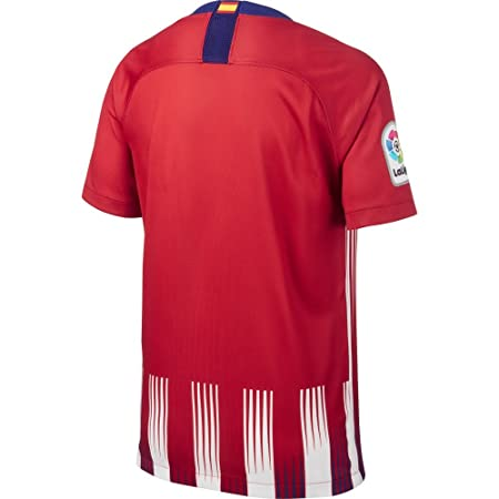 Amazon.com : NIKE 2018-2019 Atletico Madrid Home Shirt (Kids) : Sports & Outdoors