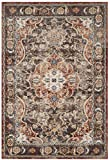 Safavieh Bijar Collection BIJ648D Traditional Oriental Vintage Brown and Rust Area Rug (3′ x 5′) Review