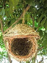 Bird Nest with 3-Inch Opening