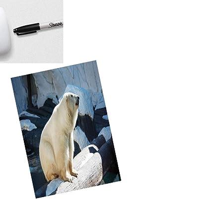 Cuaderno de tela elegante con diseño de gato impreso con ...