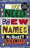 """""""We Need New Names"""" av NoViolet Bulawayo Elizabeth Z. Tshele"""