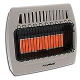 Kozy World KWP524 Gas Wall Heater
