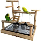 Borangs Parrots Playstand Bird Playground Wood Perch Training Stand Cockatiel Playpen Ladders Birds Swing Wood Gym Tabletop with Feeder Cups Toys Exercise Play (Design B)