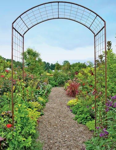 Jardin Rose Arch by Arien Metals