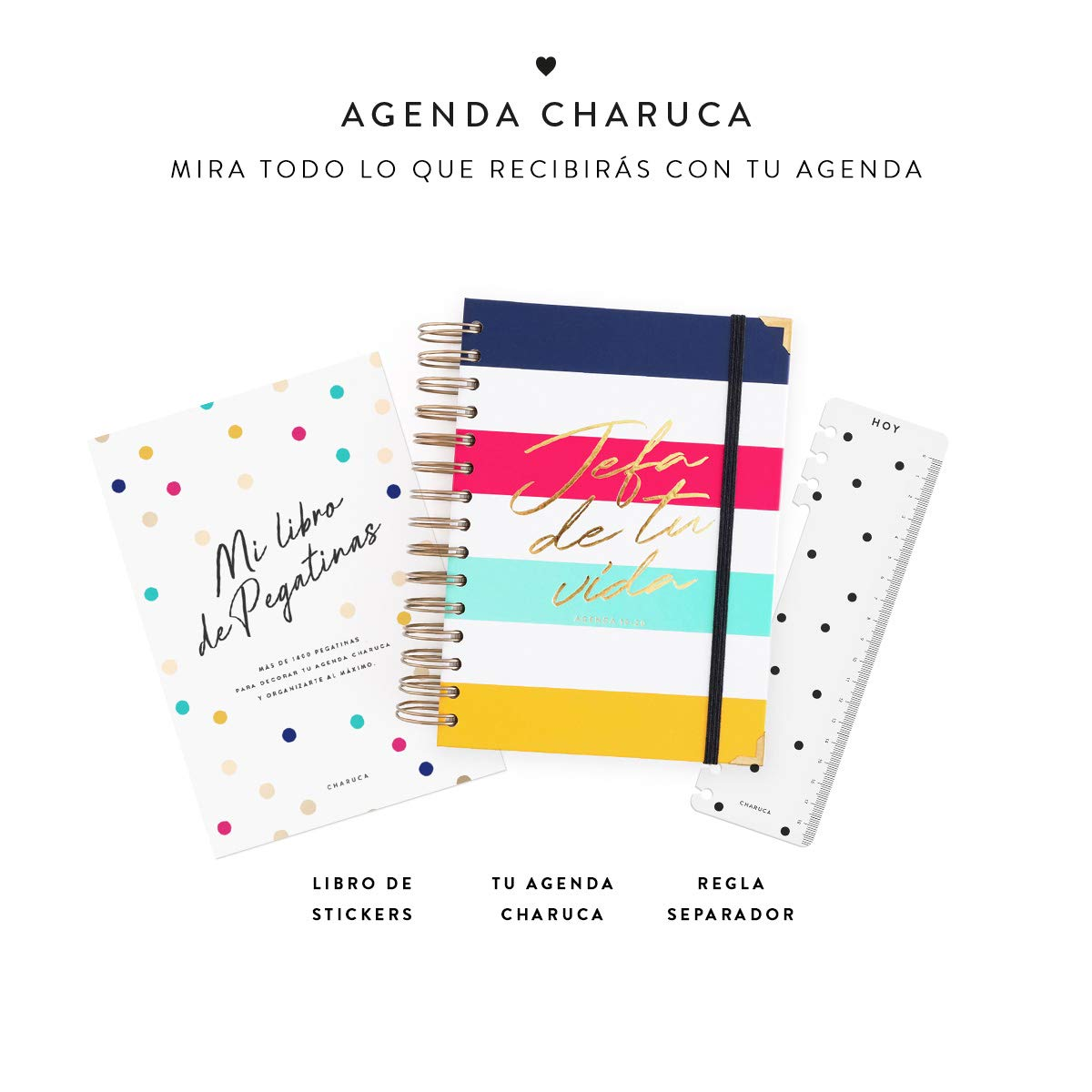 Amazon.com : 19-20 Daily Diary Head Stripes Medium : Office ...