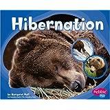 Hibernation (Patterns in Nature series)