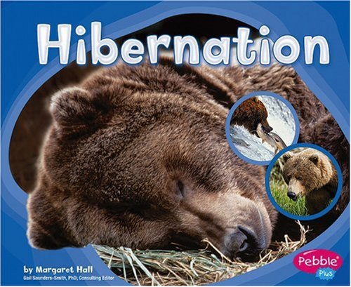 Hibernation (Patterns in Nature series) by Capstone Press