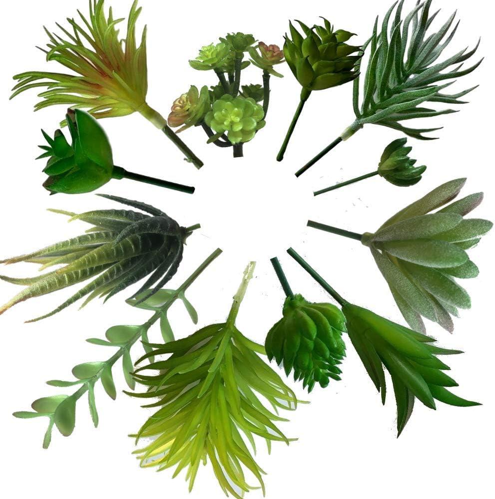 Kitchen Board Maniacs Mini Artificial Succulent Plants 12 PCS | Face Plant Decor | Fake Succulents for Decoration Unpotted Faux