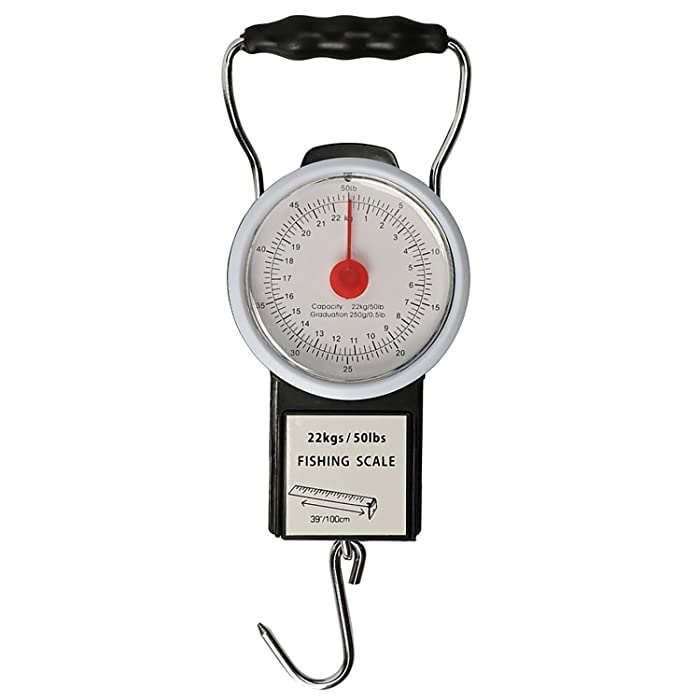 The Best Digital Weight Scale For Food Hanging