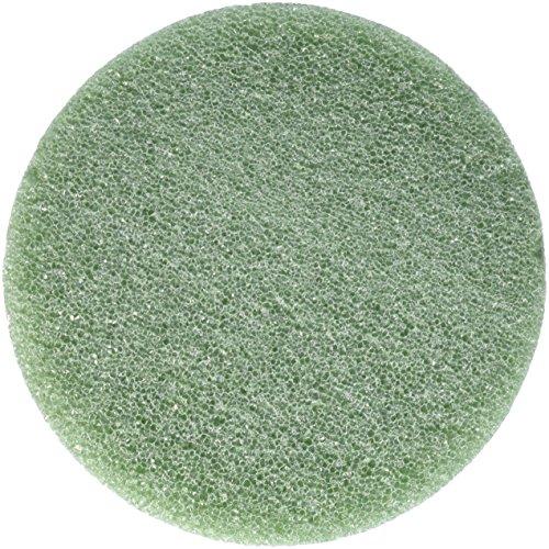 FloraCraft Styrofoam Disc 1.25 Inch x 5.8 Inch Green
