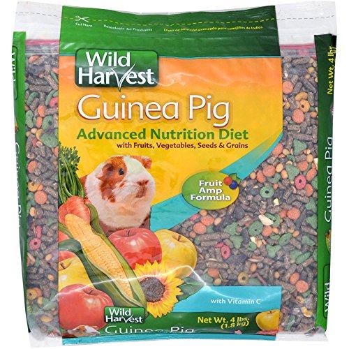 wild-harvest-super-premium-guinea-pig-blend-with-ester-c-4-lb