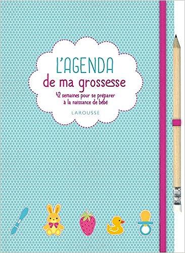 L Agenda De Ma Grossesse 9782035913333 Amazon Com Books
