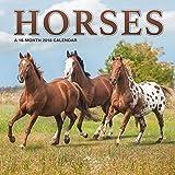Horses 2018 Wall Calendar