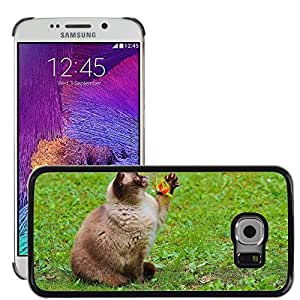 GoGoMobile Slim Protector Hard Shell Cover Case // M00118151 Cat British Shorthair Play Mieze // Samsung Galaxy S6 EDGE (Not Fits S6)