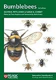 Bumblebees: 6 (Naturalists' Handbook)