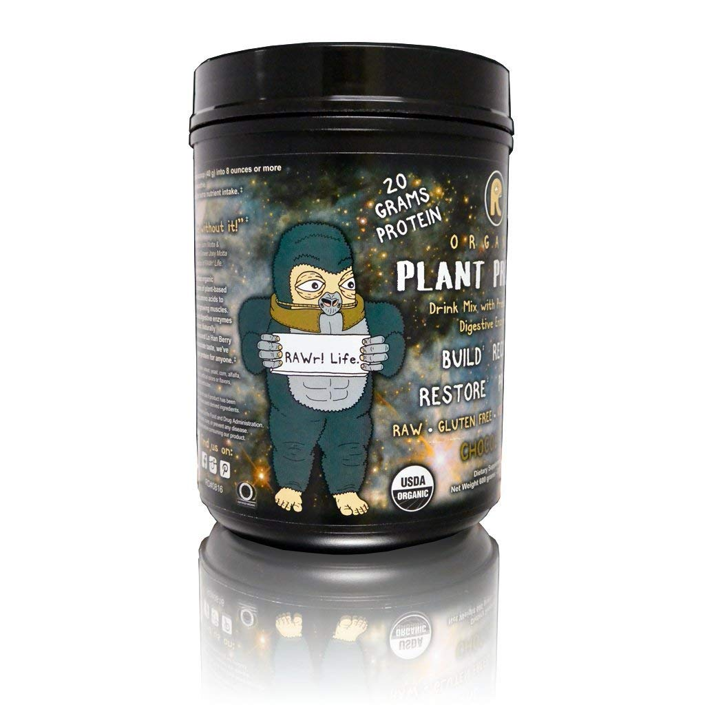 RAWr Plant Protein – Plant Based Protein Powder Digestive Enzymes Prebiotics – Certified Organic – Chocolate -Created by Pro Skateboarder John Motta Pro BMXer Rare Fruit Grower Joey Motta.