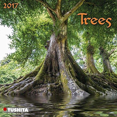 Trees 2017: Kalender 2017 (Mini Calendars)