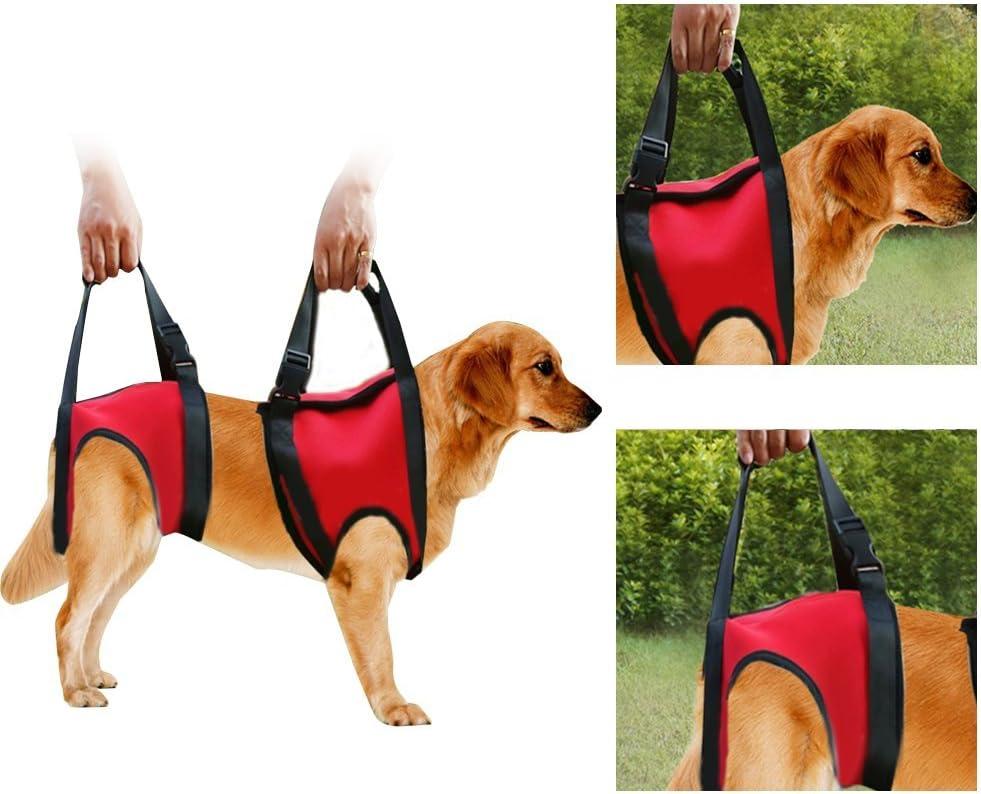Filfeel Soporte para perros Arnés Pet Walking Ayuda Lifting Pulling Vest Sling Support Rehabilitation para perros viejos y heridos(Pata trasera - M-rojo)