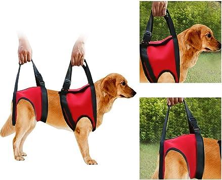 Filfeel Soporte para perros Arnés Pet Walking Ayuda Lifting Pulling ...