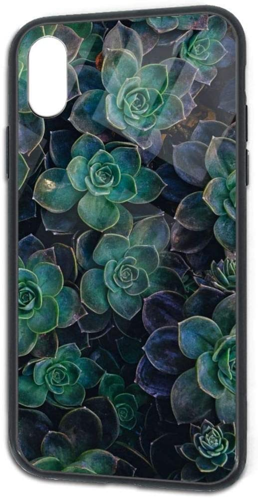 iPhone X iPhone Xs Case Tempered Glass Back Cover and Soft Silicone TPU Slim Fit Protective Case for Black Green Plants iPhone X/Xs TPU Glass Phone Case
