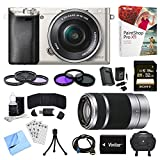 Sony Alpha a6000 24.3MP Digital Camera with 16-50mm Power Zoom and 55-210mm Lenses (Silver)