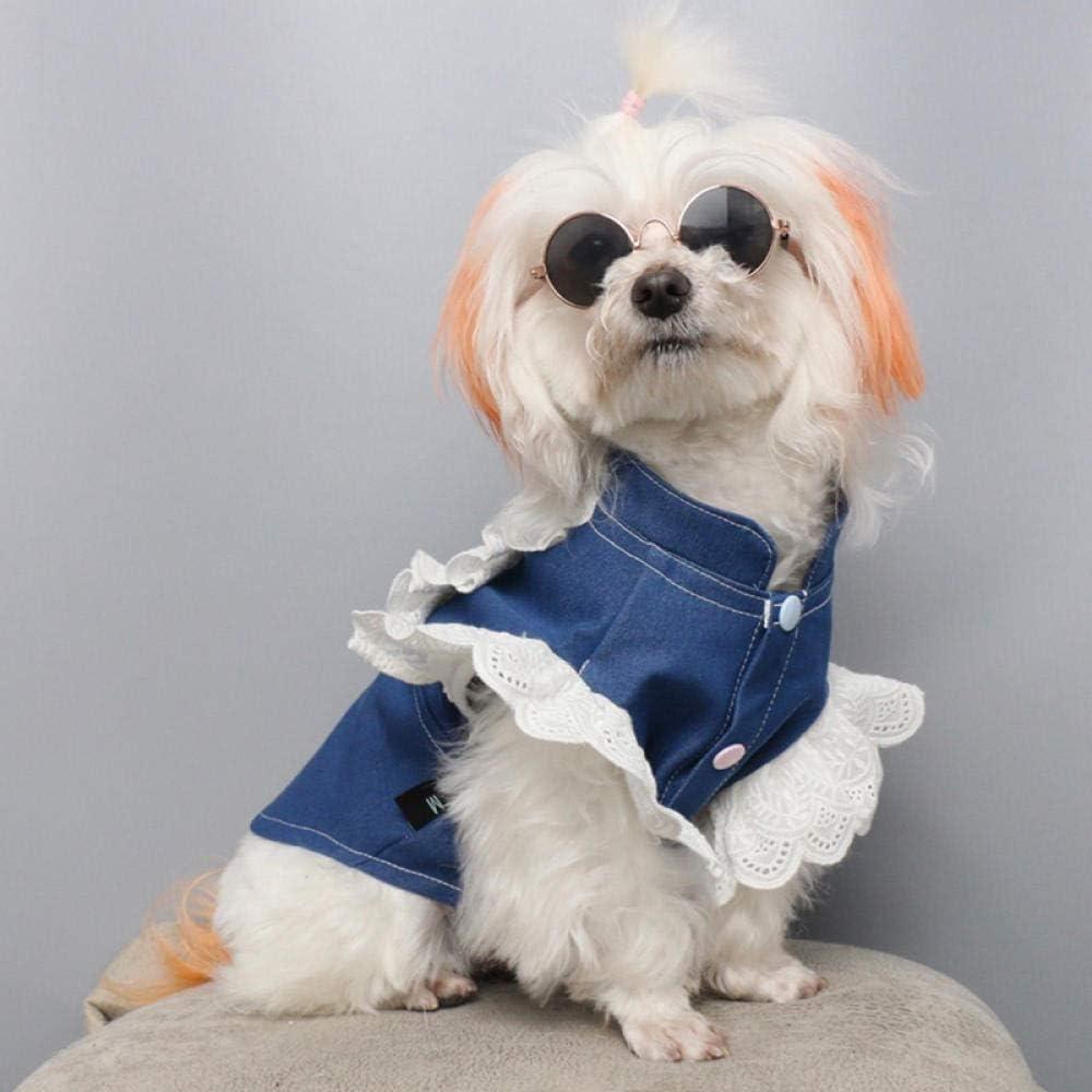 Gato Ropa para Perros Camisa de Mezclilla Primavera y Verano Bomei Delgada Que Oso Perrito Princesa Disfraz Anti Pelo Pelo Camisa Mascota @ Mascota Encaje Angel Camisa_XL: Amazon.es: Productos para mascotas