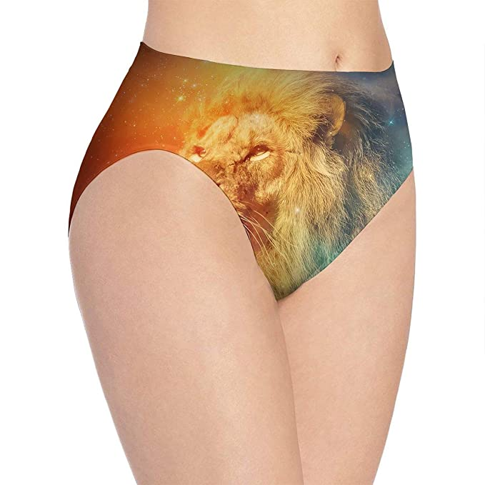 High Waist Panties Women s Underwear Soft Breathable Lion Brief Panty at  Amazon Women s Clothing store  ab607f439