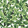 "RoomMates RMK11045WP Palm Leaf Peel and Stick Wallpaper, 20.5"" x 16.5 feet, Green"