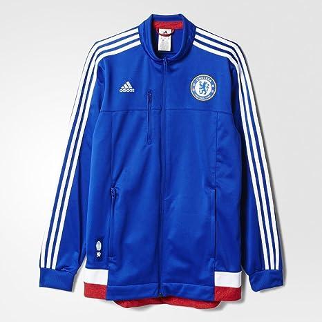 adidas Chelsea FC 2015 16 Chaqueta de Himno  cheblu   Amazon.es ... 8f06d44d7f9eb