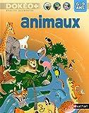 ANIMAUX + REALITE AUGMENTEE