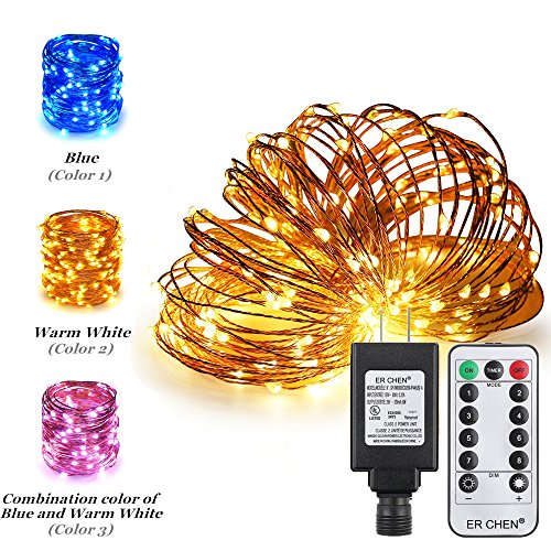 Dual Color Led Light String in Florida - 5