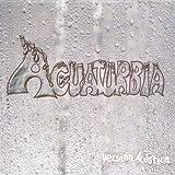Version Acustica