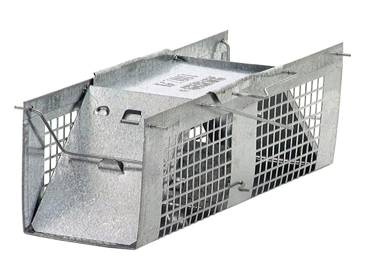 Havahart Mouse Trap Review