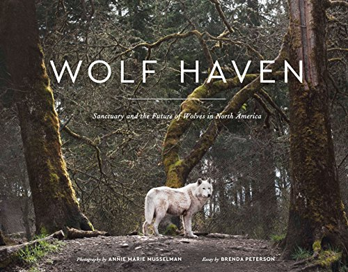 Wolf Haven: Sanctuary and the Future of Wolves in North America (America Christmas North In)