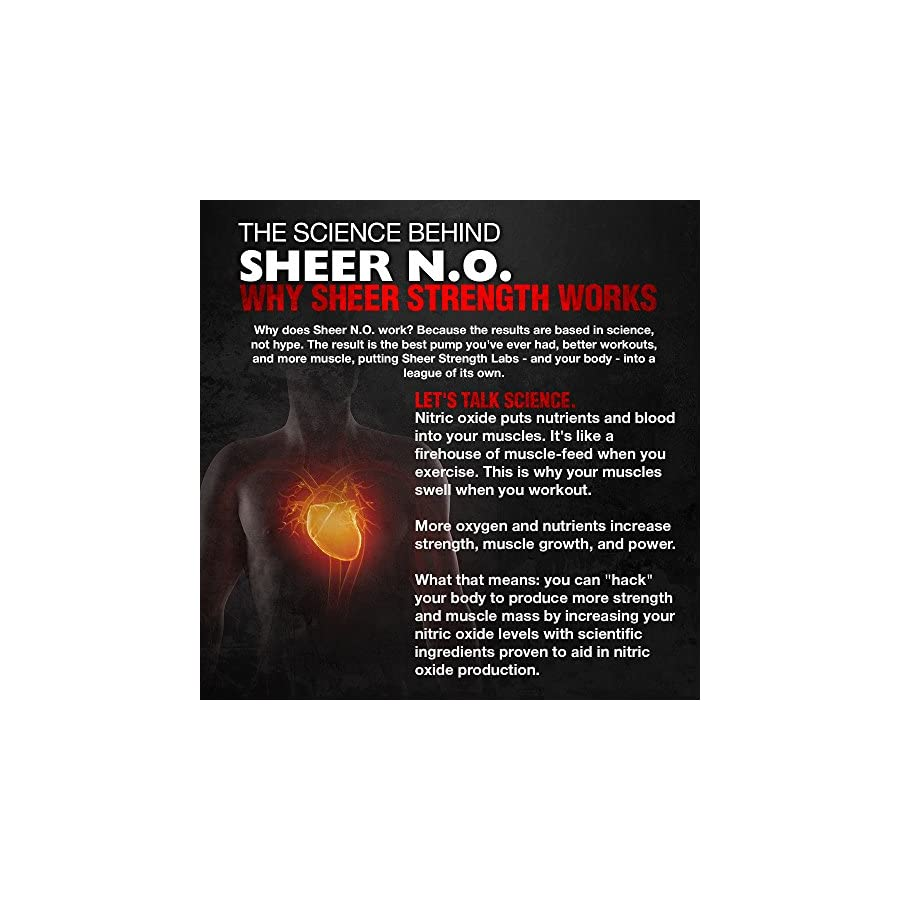 SHEER N.O. Nitric Oxide Supplement Premium Muscle Building Nitric Oxide Booster with L Arginine Sheer Strength Labs 120ct