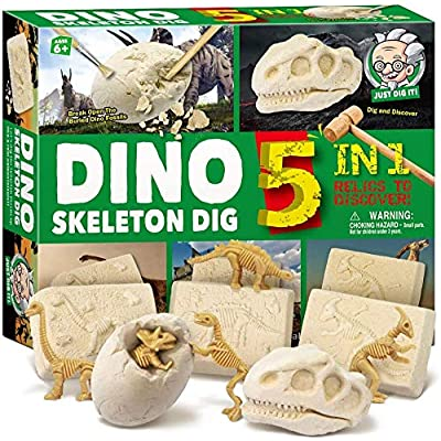 7-Mi Dinosaur Skeleton Dig Kit for Kids Break Into 5 Bricks Fossils Excavation Set Interactive Excavating Toys Great Birthday Gift Idea, Contest Prize for Boys and Girls: Toys & Games
