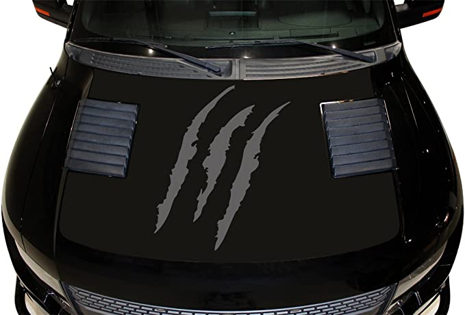 Ford Raptor Hood Matte Blackout Graphics Gloss Print Avery A6 Solid 2010