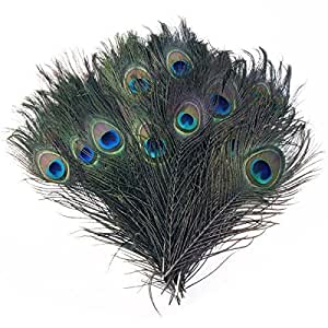 Trimming shop 12 peacock eye tail feathers for Where can i buy peacock feathers craft store