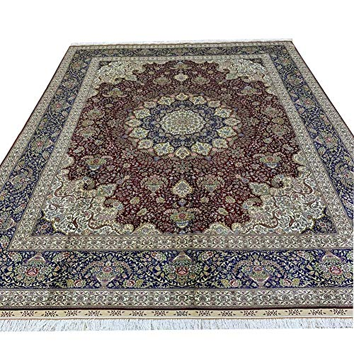 Camel Carpet 8x10ft Large Hand Knotted Silk Oriental Carpet Handmade Persian Rug for Home Office (Red)