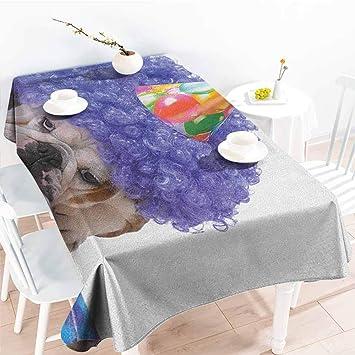 Amazon.com: Familytaste - Cubierta de mesa para cumpleaños ...