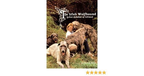 The Irish Wolfhound Great Symbol Of Ireland John A Donovan