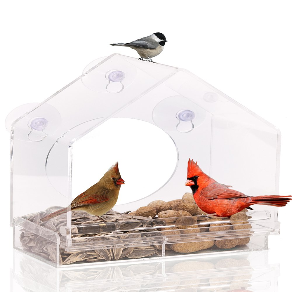 Large Premium Window Bird Feeder Guaranteed For Life. Includes Easy Removable.. 18