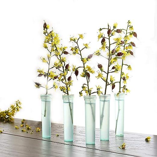 Fiori Per Composizioni Floreali.Sqzw Confezione Da 100 Fiale Per Fiori In Plastica Trasparente